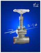 薄膜调节阀、冷箱阀、电磁阀及各类特种专用阀门
